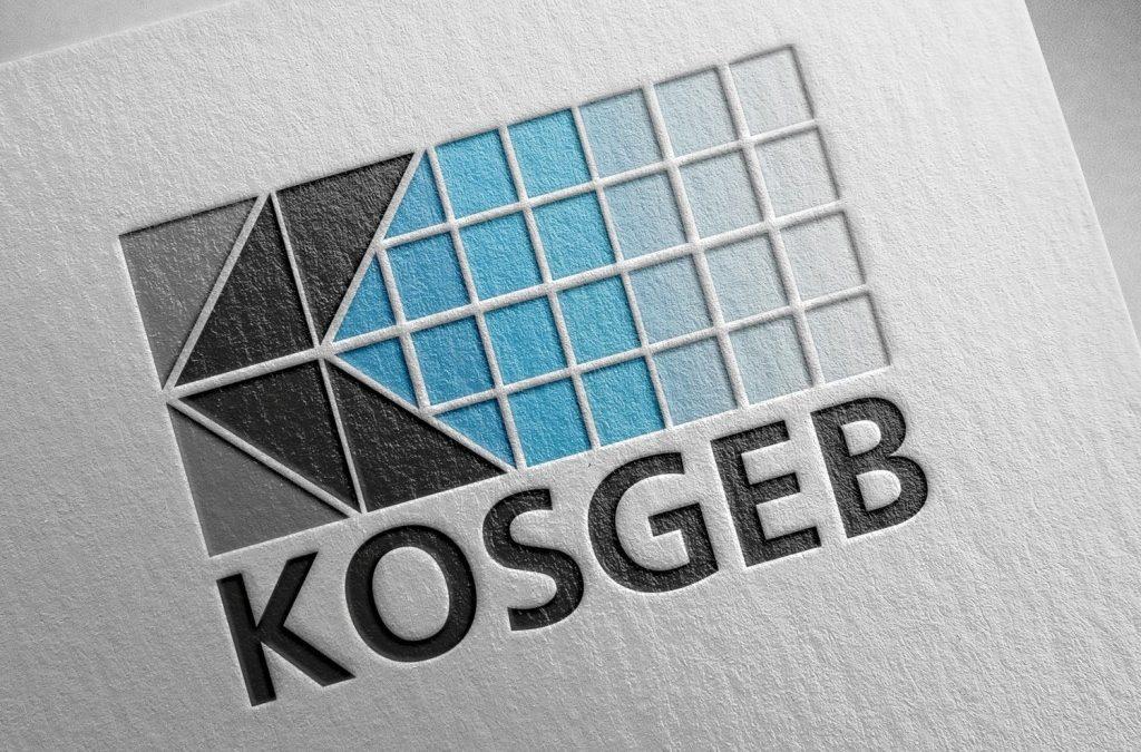 KOSGEB Yeni Girişimci Desteği İş Planı Formu